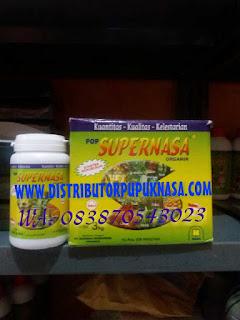 http://www.distributorpupuknasa.com/2017/11/distributor-pupuk-nasa-di-rokan-hilir-riau.html