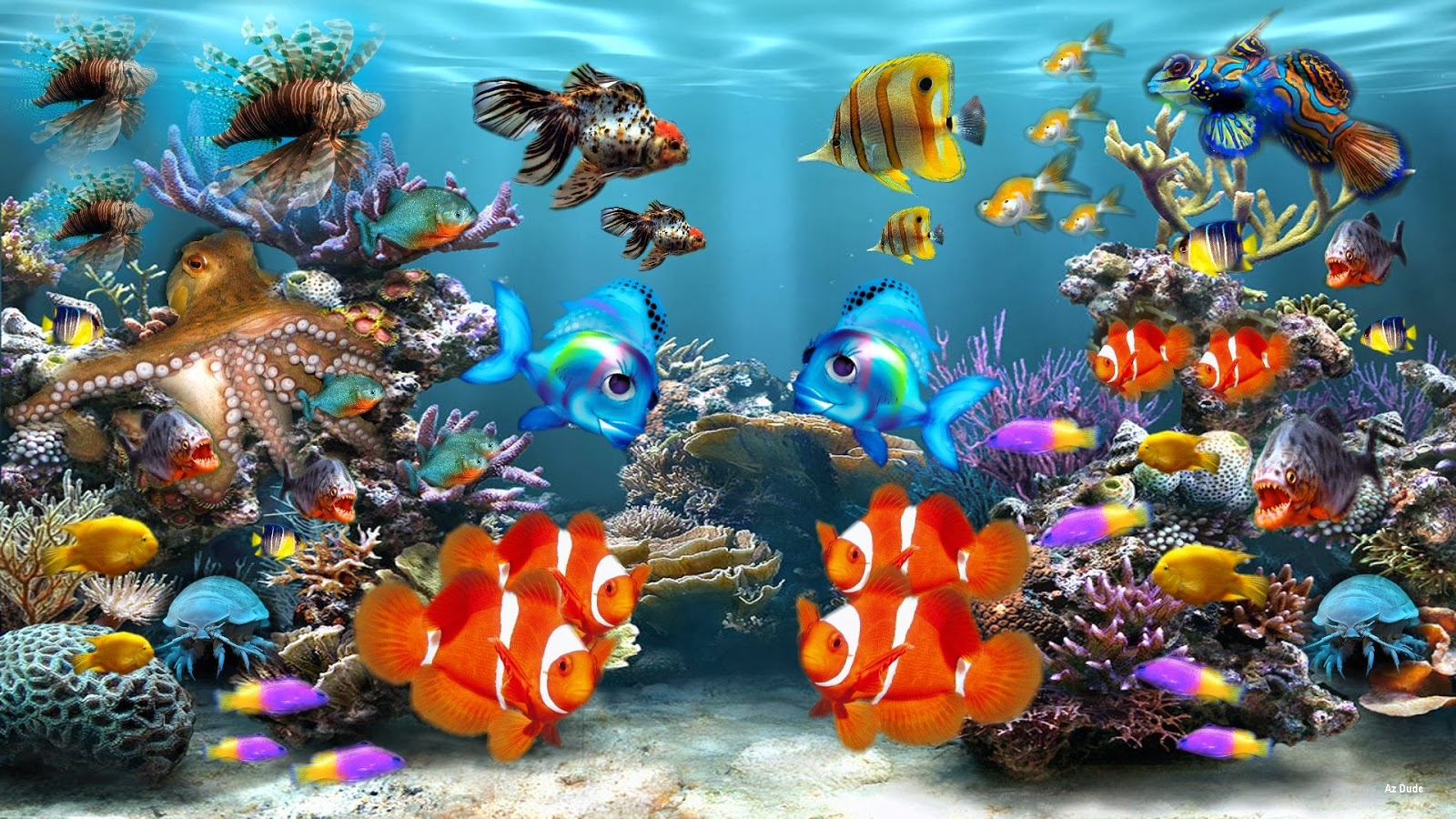 Aquarium HD Wallpapers - Wallpaper Gallery