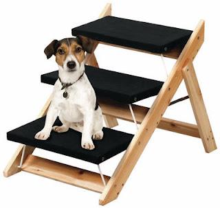 escada instável para cães