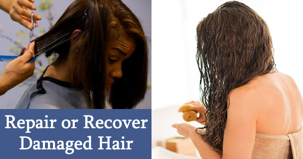 How to Repair Recover Care Damaged HAIR at Home