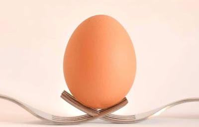 Egg preservation