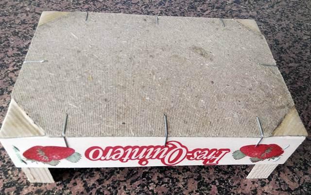 Caja de fresas con esquinas de cartón