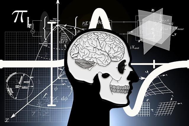 الفرق بين العقل والدماغ