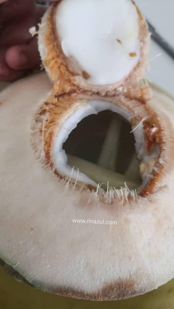 kelapa bakar ikhtiar hamil