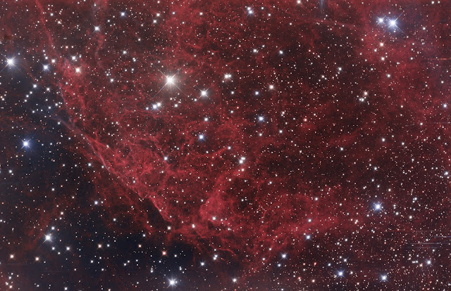 """An HaRGB section of the Vela Nebula supernova remnant acquired and processed by Franck Jobard on Insight Observatory's 12.5"""" f/9 Ritchey-Chretien affiliate remote telescope located at Deep Sky Chile."""