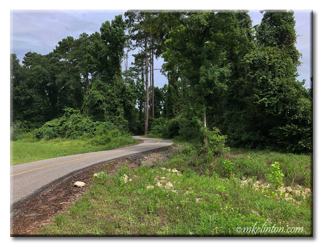 Spring Creek Greenway Trail