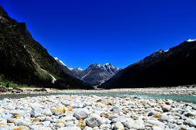 Yumthang Valley Travel Guide