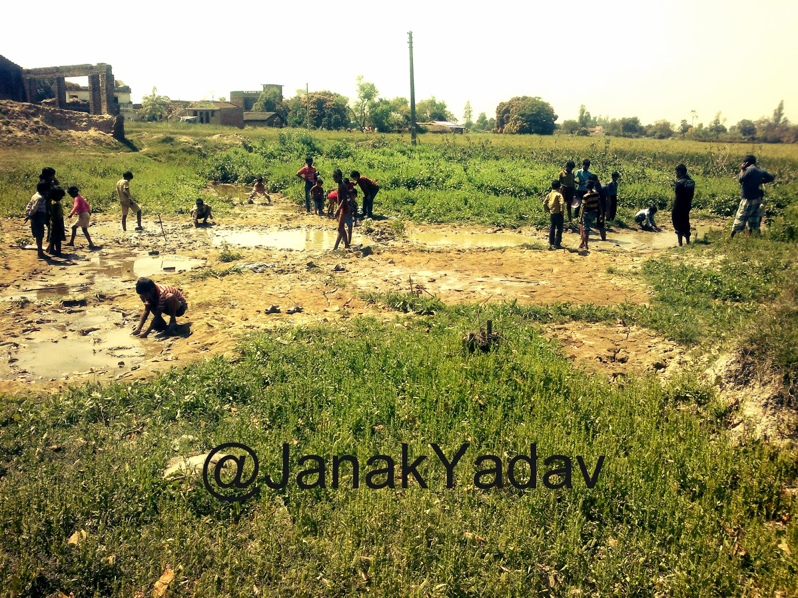 whole village kids are busy doing mud fishing with just hands, bare hands only, no hook required to fish