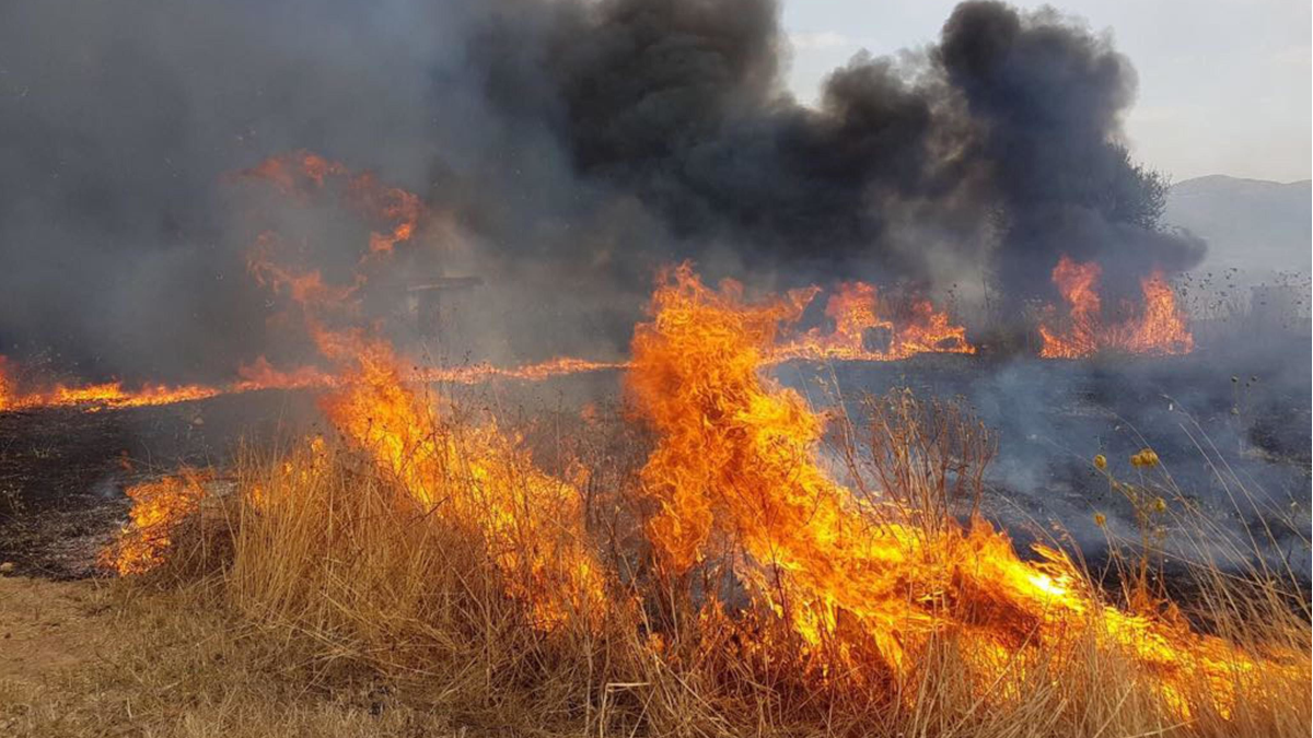Manutenzione verde pubblico prevenzione incendi