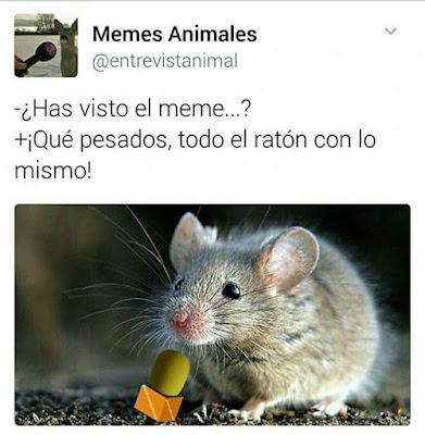 todo el ratón con lo mismo