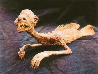mumi putri duyung yang paling menyeramkan dan mengerikan di dunia-3
