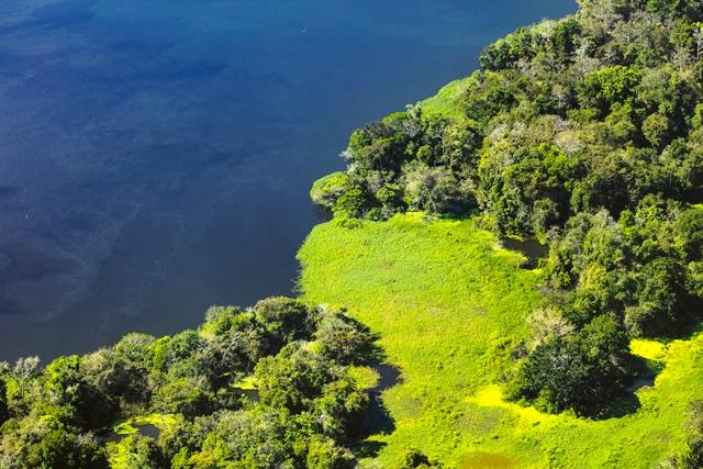 Amazônia, beleza e responsabilidade