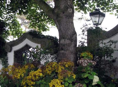 Portão e flores e árvores na frente