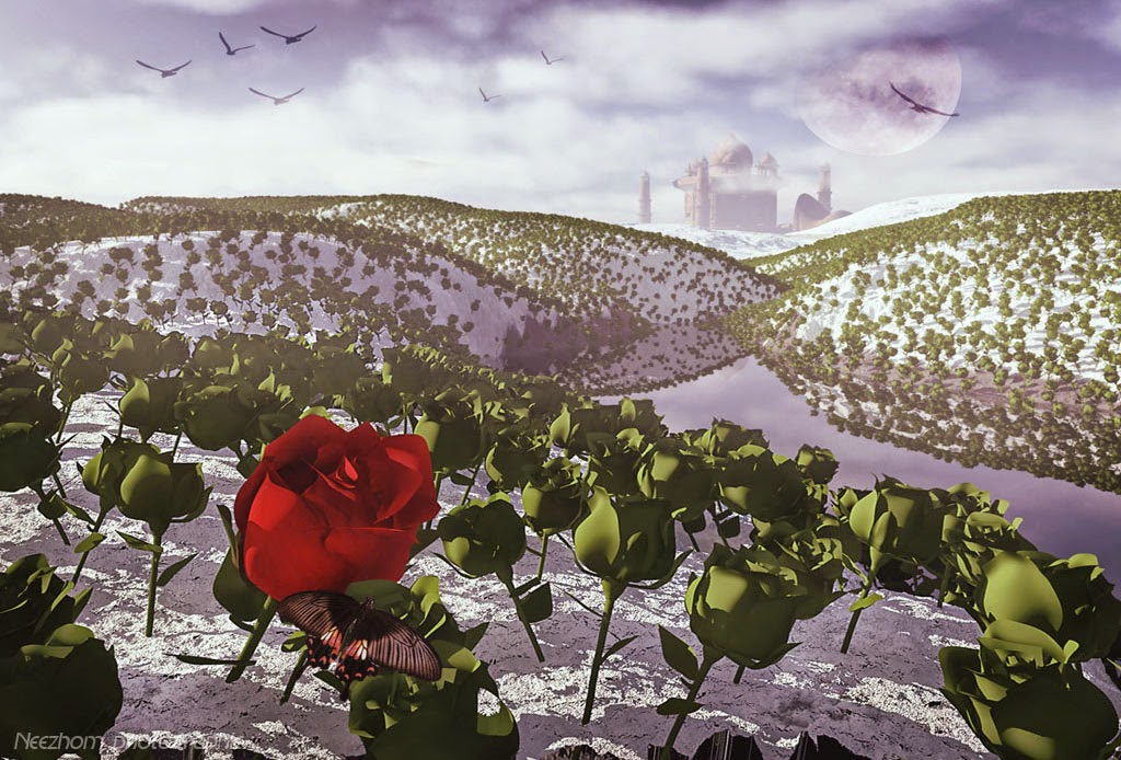 rose land 3d graphic picture