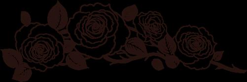 Image result for เส้นคั่นสีดำ