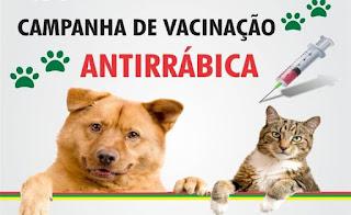 Ministério da Saúde suspende temporariamente campanha de vacinação antirrábica em SP e outros estados