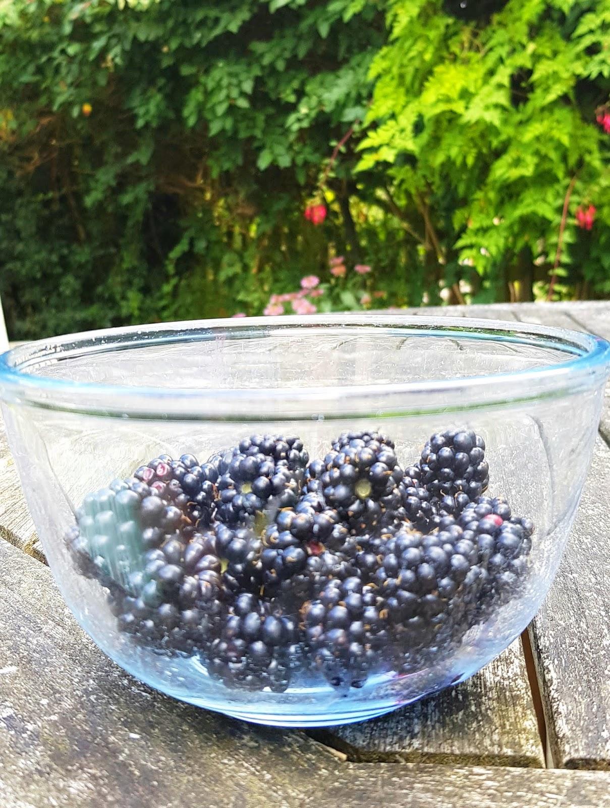 Wonderful stewed with apple:  wild blackberries