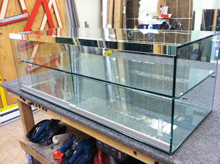 Glass Display Cases by Giovani Glass
