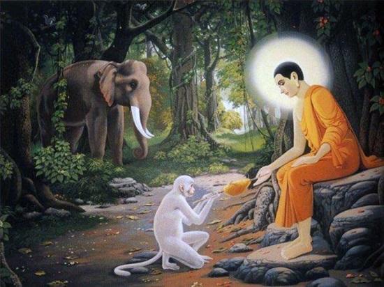 Chuyện cổ Phật gia: Ác khẩu gây khẩu nghiệp, báo ứng không hề nhẹ