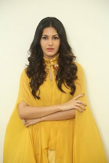 Amyra Dastur Stills At Manasuku Nachindi Movie Interview 16
