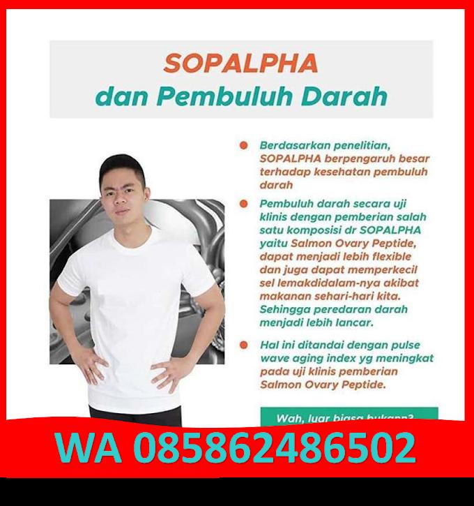 Agen SOPALPHA Indramayu || WA 085862486502