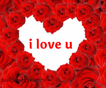 i love you images with roses  गुलाब  के फूल के साथ आई  लव यू