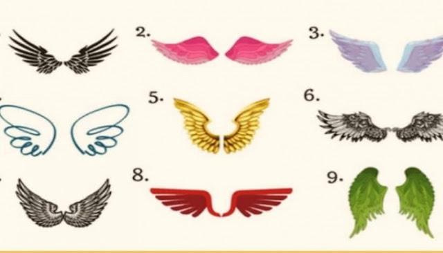 Διάλεξε ένα από τα 9 ζευγάρια φτερών