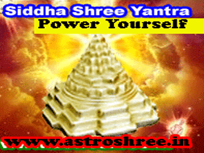 siddha shree yantra for success by astrologer