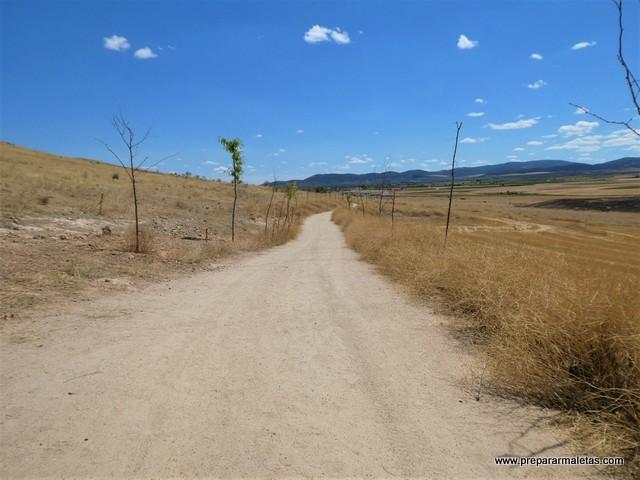ruta de senderismo en Consuegra a los molinos