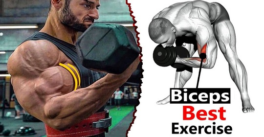 Complete Massive Big Biceps Workout Forever