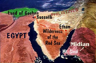 1/16/2012, 2012, 5/5/2012, Big tree, cypress, exodus, fire, florida, israel, missile, moses, netanyahu, phoenix, senator tree, wwiii,