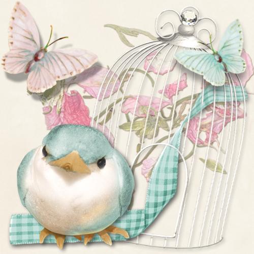 HappyBird's Glitter Nest        The