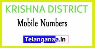 KRISHNA DISTRICT Tahsildar (MRO) OFFICE Phone Numbers-Mobile Numbers Andhra Pradesh State