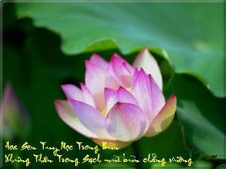 Trên Các Bức Tranh Lụa Phật Giáo Cũng Có Hình Tượng Hoa Sen Như Trong Tranh  Lụa Tây Tạng Có Dấu Chân Của Thanh-Đa-La Trên Hoa Sen. Trong Các Tranh Ảnh  Về ...