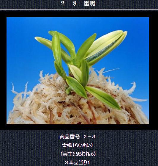 http://www.fuuran.jp/2-8.html