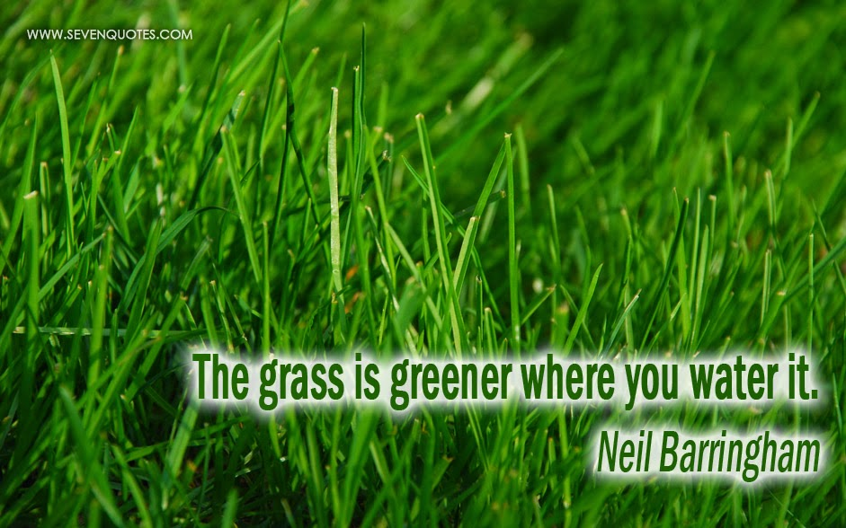 Grass Is Always Greener Quotes: Every Day Is Special: March 30