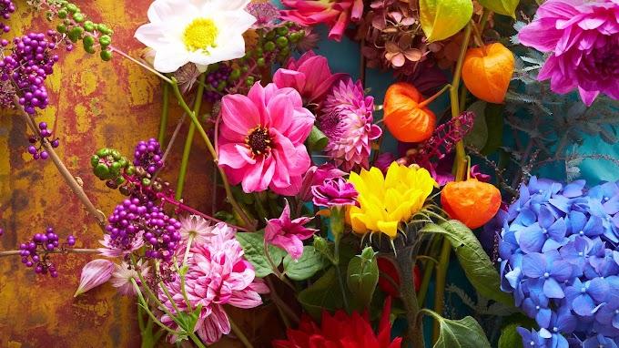 Flores Coloridas LG V35 ThinQ V35
