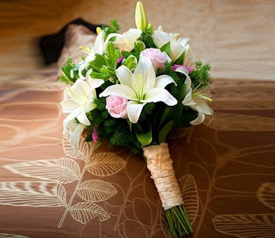 hoa cam tay hoa ly