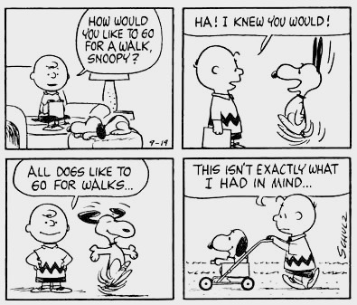 Charlie Brown asks Snoopy if he wants to go for a walk. Snoopy does a happy dance. Charlie Brown pushes Snoopy in a stroller. This isn't exactly what I had in mind. Does sighing count as exercise?.jpg