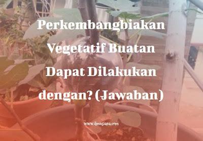 Perkembangbiakan Vegetatif Buatan Dapat Dilakukan dengan