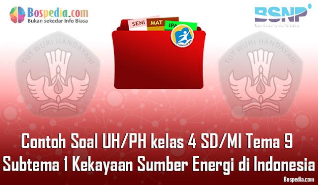 Contoh Soal UH / PH untuk kelas 4 SD/MI Tema 9 Subtema 1 Kekayaan Sumber Energi di Indonesia