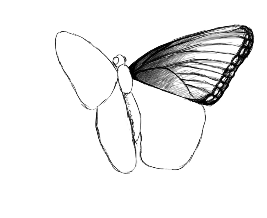 How to draw flying butterfly