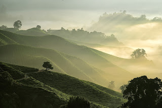beautiful vista of a Cameroon valley with green rolling hills and misty fog