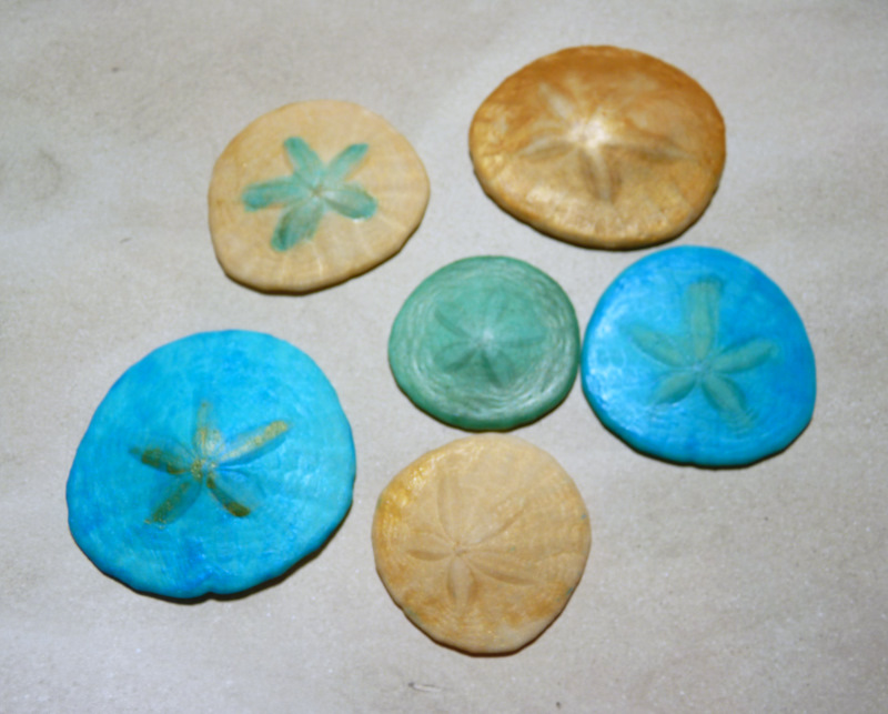 Project Sand Dollar Jewelry Crafts