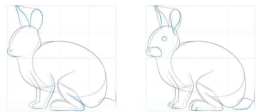Einen hasen zeichnen - hasen und kaninchen zeichnen | ganz ...