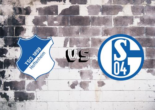Hoffenheim vs Schalke 04  Resumen