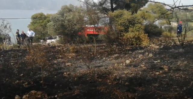 Πυρκαγιά στο Θύνι Κρανιδίου (βίντεο)