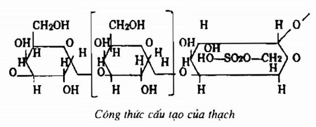 Thành phần hóa học của Thach - Gelidium amensii - Nguyên liệu làm thuốc Nhuận Tràng và Tẩy