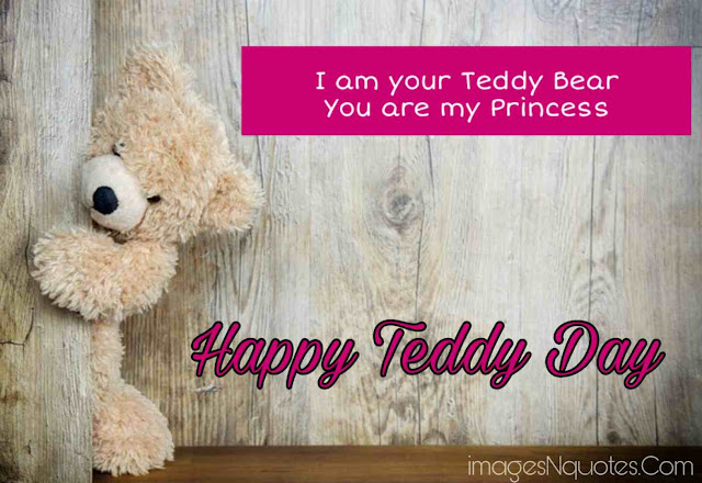 Cute teddy day pics