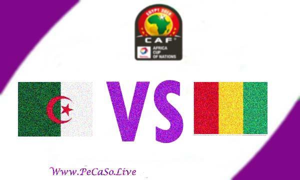 مشاهدة مباراة الجزائر وغينيا بث مباشر 7-7-2019 Algeria vs Guinea Live